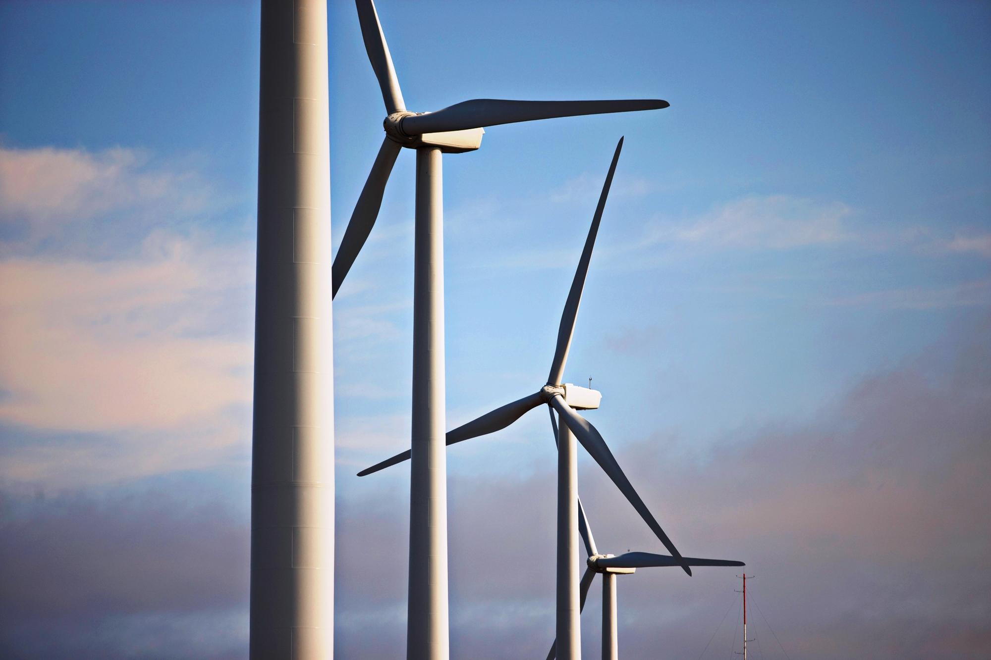 Wind mills in Digby Neck